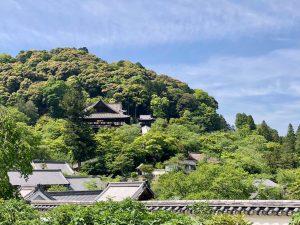 第四十回 奈良県 長谷寺・室生寺参拝