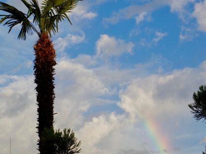 第九十八回 虹が見えた日